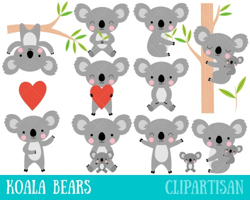 small resolution of 50 koala clipart