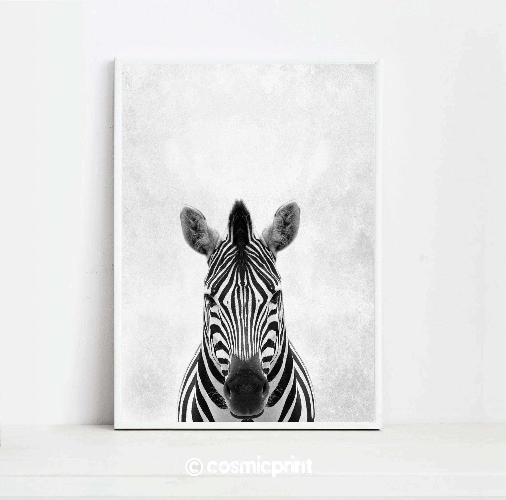 Zebra Print Zebra Poster Wall Art Print Animal Print Zebra