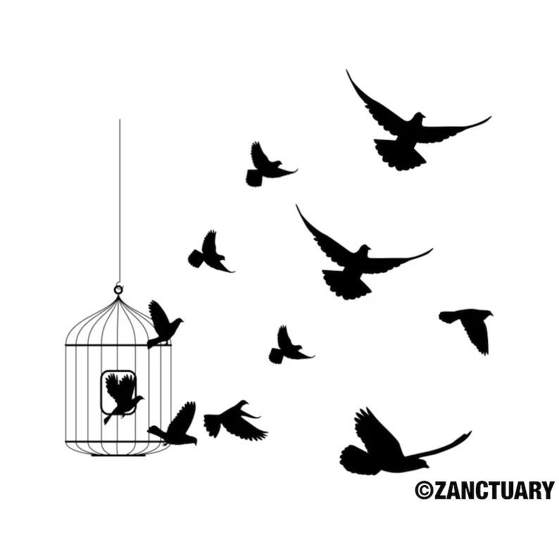 bird temporary tattoo bird