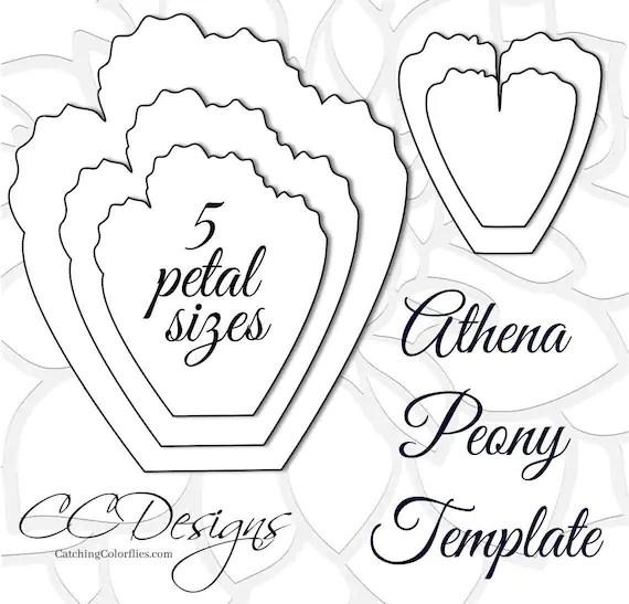 Giant Paper Peonies, Printable PDF Flower Templates, Peony