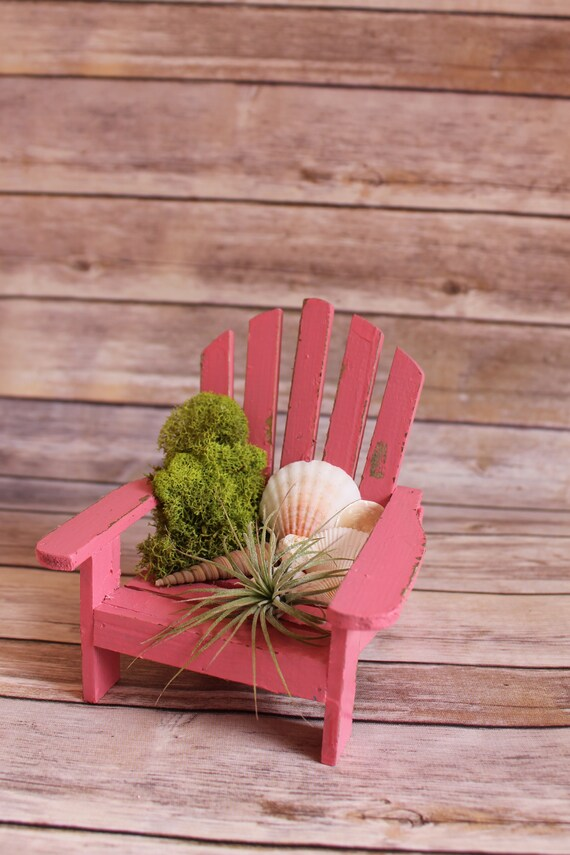 pink beach chair rent covers indianapolis air plant terrarium etsy