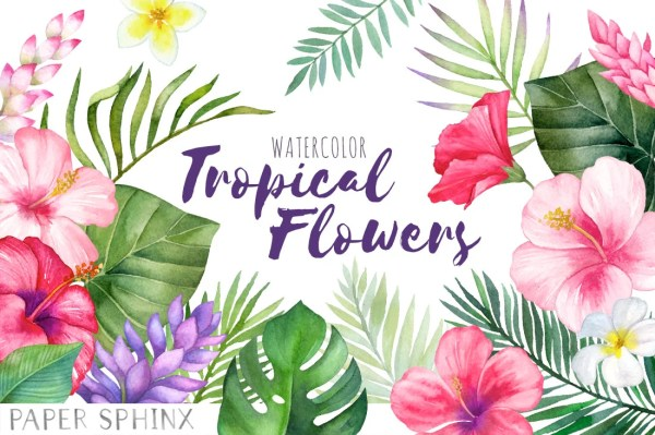 watercolor tropical flowers clipart