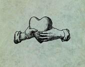 Hands Holding A Heart - A...