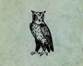 Owl - Antique Style Clear...