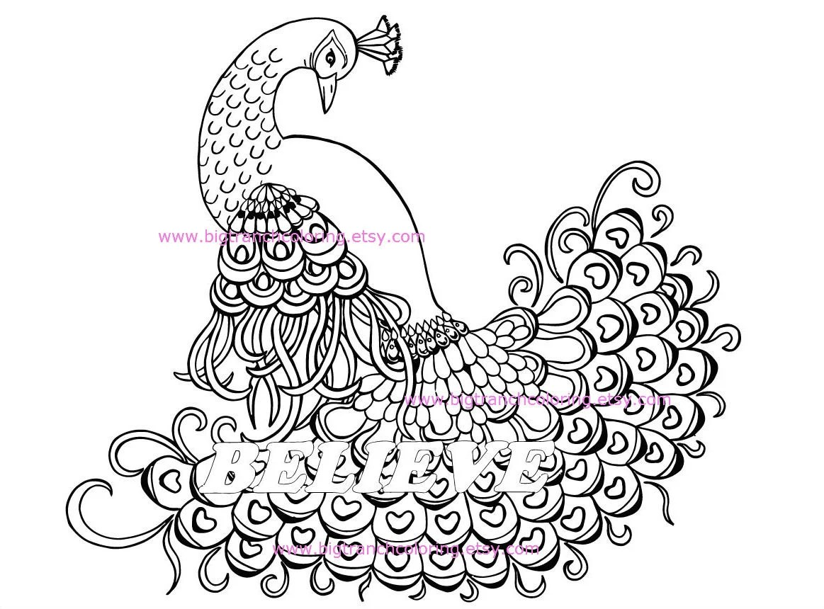 Believe Peacock Adult Coloring Page Colouring Coloring for