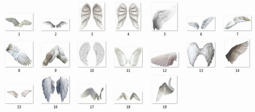 15 Angel Wings Overlays Photoshop Overlays Angel Wings