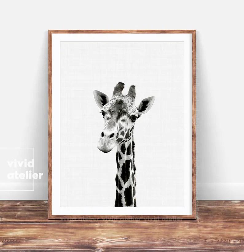 giraffe print giraffe wall