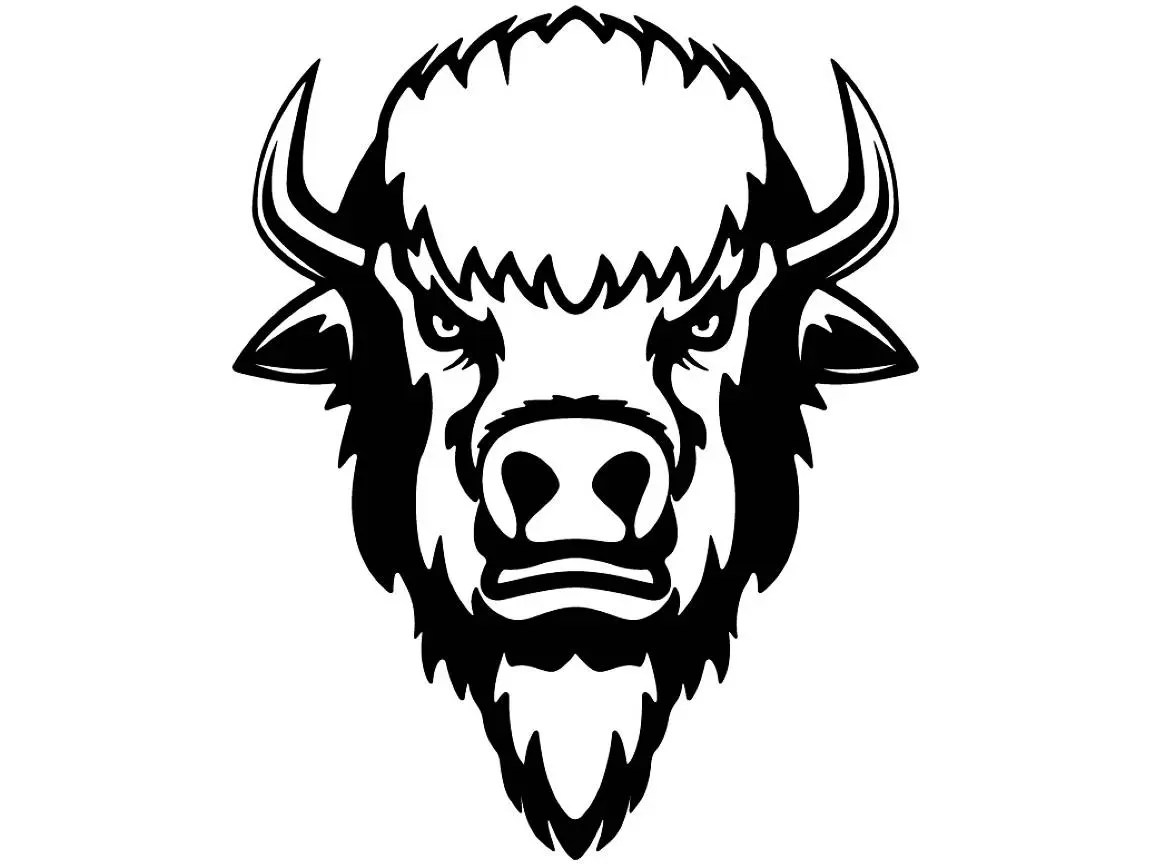 Buffalo 2 Bison Head Wild Animal Wildlife Mascot Company