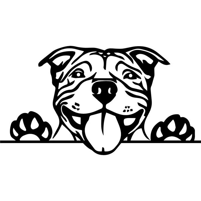 American Pit Bull 7 Puppy Peeking Paws Pet Terrier Dog