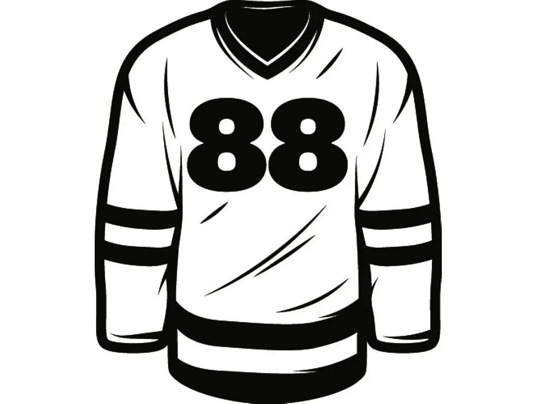 Hockey Jersey 5 Equipment Uniform Pads Stadium Arena Ice