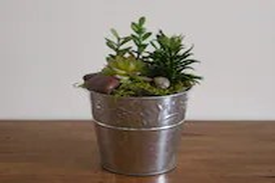 Artificial succulent arra...