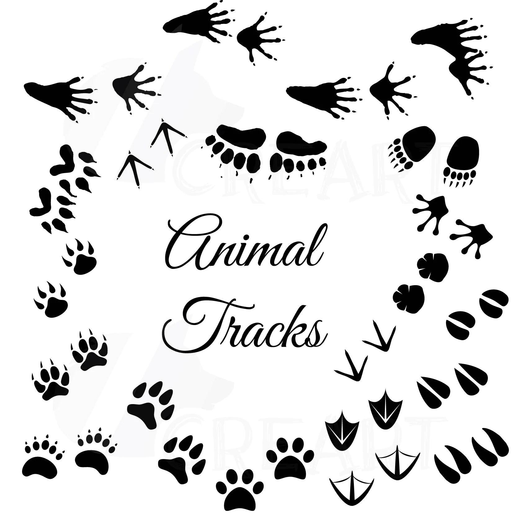 Animal Tracks Woodland Animals Footprints Clipart Pack