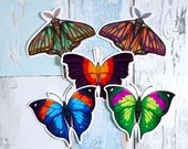 Lepidoptera 5 pack - 5 large 10cm vinyl stickers of butterflies and moths sticker multipack
