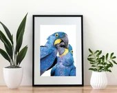 Giclée Art Print 'Kisses in Blue' - A4 size colored pencil drawing by Wild Portrait Artist, wildlife realistic parrot painting
