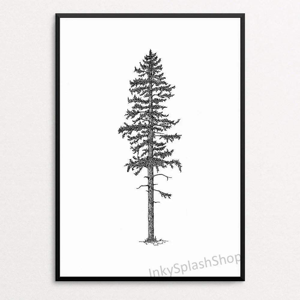 pine tree ink drawing