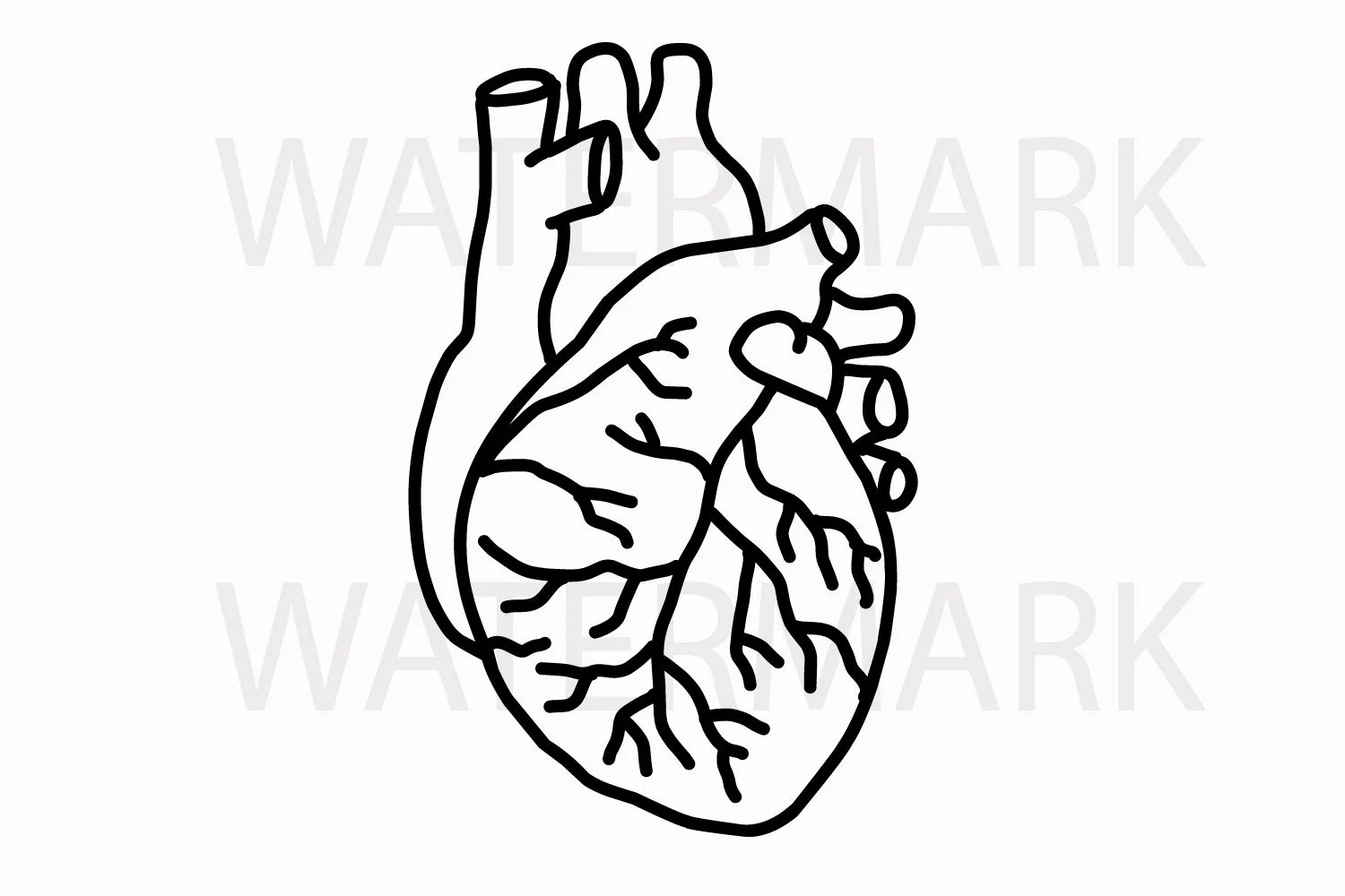 Human Heart Line Drawing JPG/SVG Real Hand Drawing for