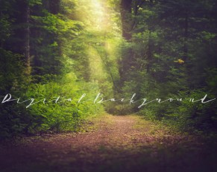 Enchanted forest backdrop Etsy