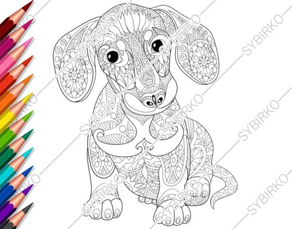 dachshund coloring pages # 8