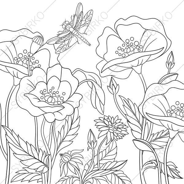 Coloring Pages for adults. Dragonfly Poppy flowers