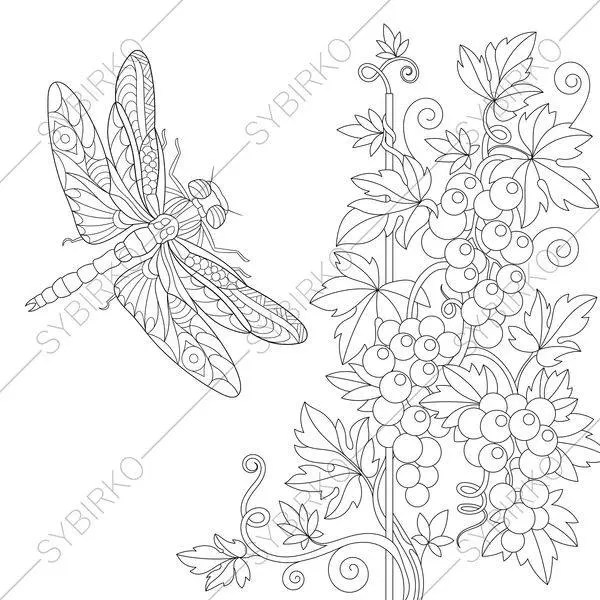 Dragonfly. Botanical Plants and Flowers. 3 Coloring Pages