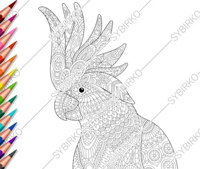 Coloring Pages For Adults Cockatoo Parrot Adult Coloring Etsy