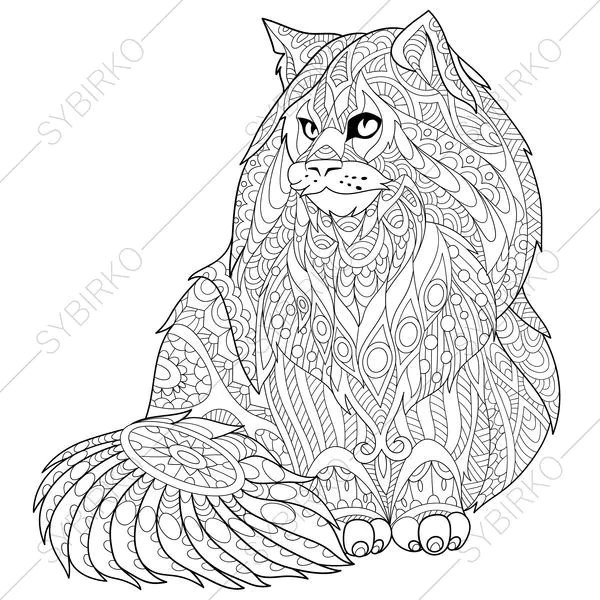 Maine Coon Cat. Kitten. 2 Coloring Pages for National Pet