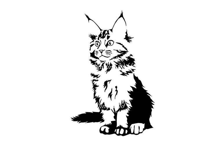 Maine Coon art design svg png vector graphic clipart maine
