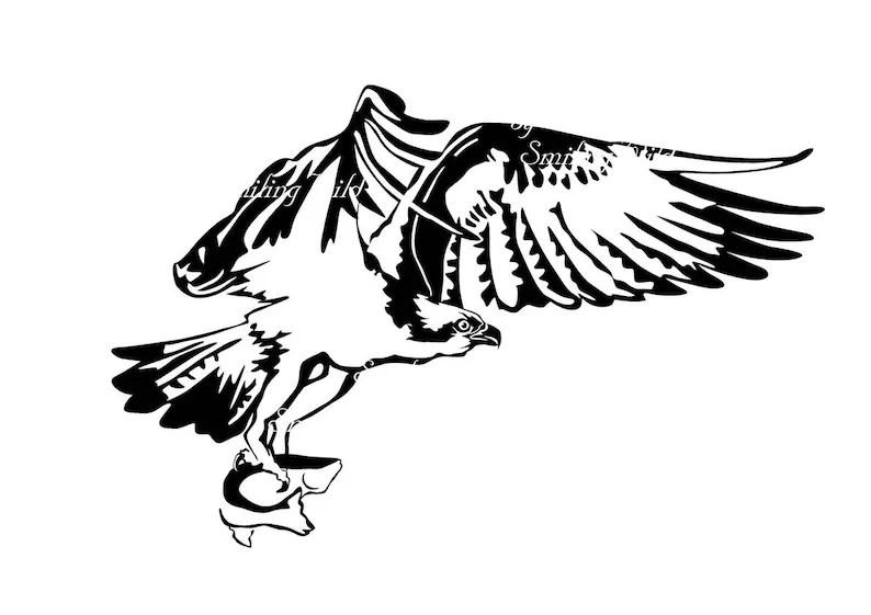 Osprey svg sea hawk clipart art bird of prey vector