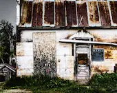 Instant Download Historic Creamery Building and Cat Color Photo Fine Art Photography
