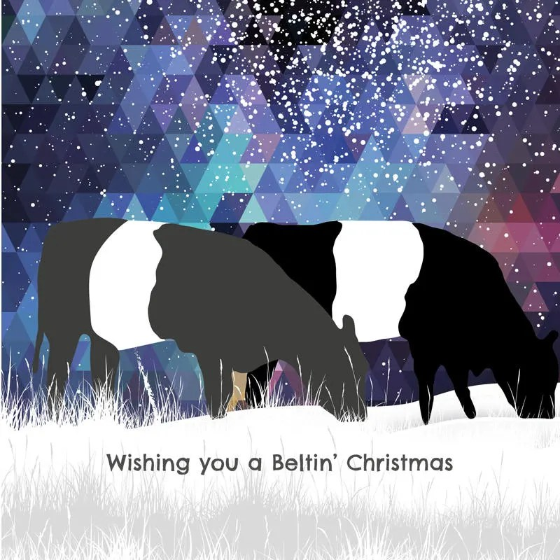 Belted Galloway Etsy