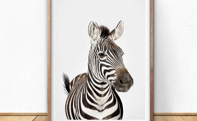 Zebra Digital Print Nursery Wall Art Safari Decor