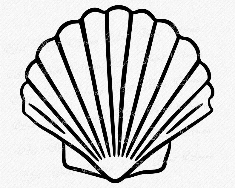 mermaid shell svg outline