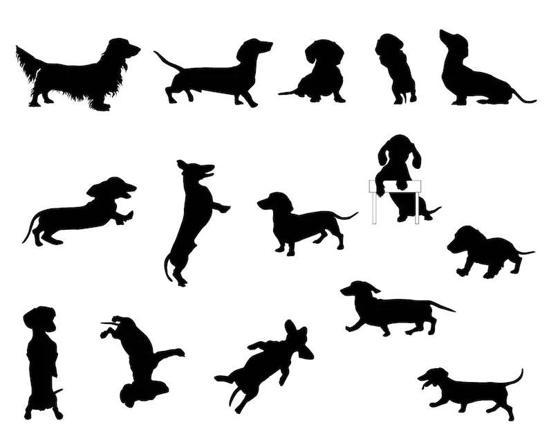 Dog SVG silhouette Dachshund clipart puppy stencil