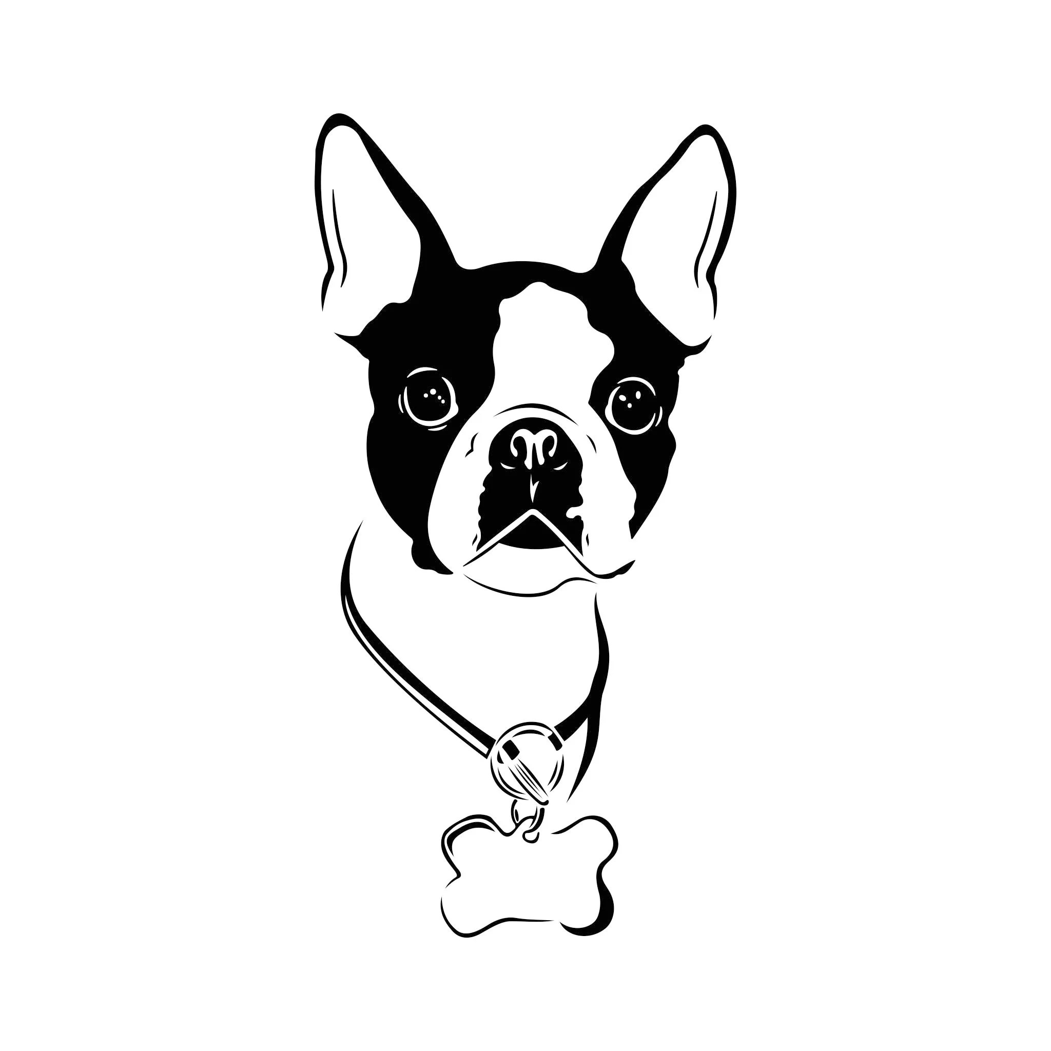 Boston Terrier Dog Graphics Svg Dxf Eps Cdr Ai