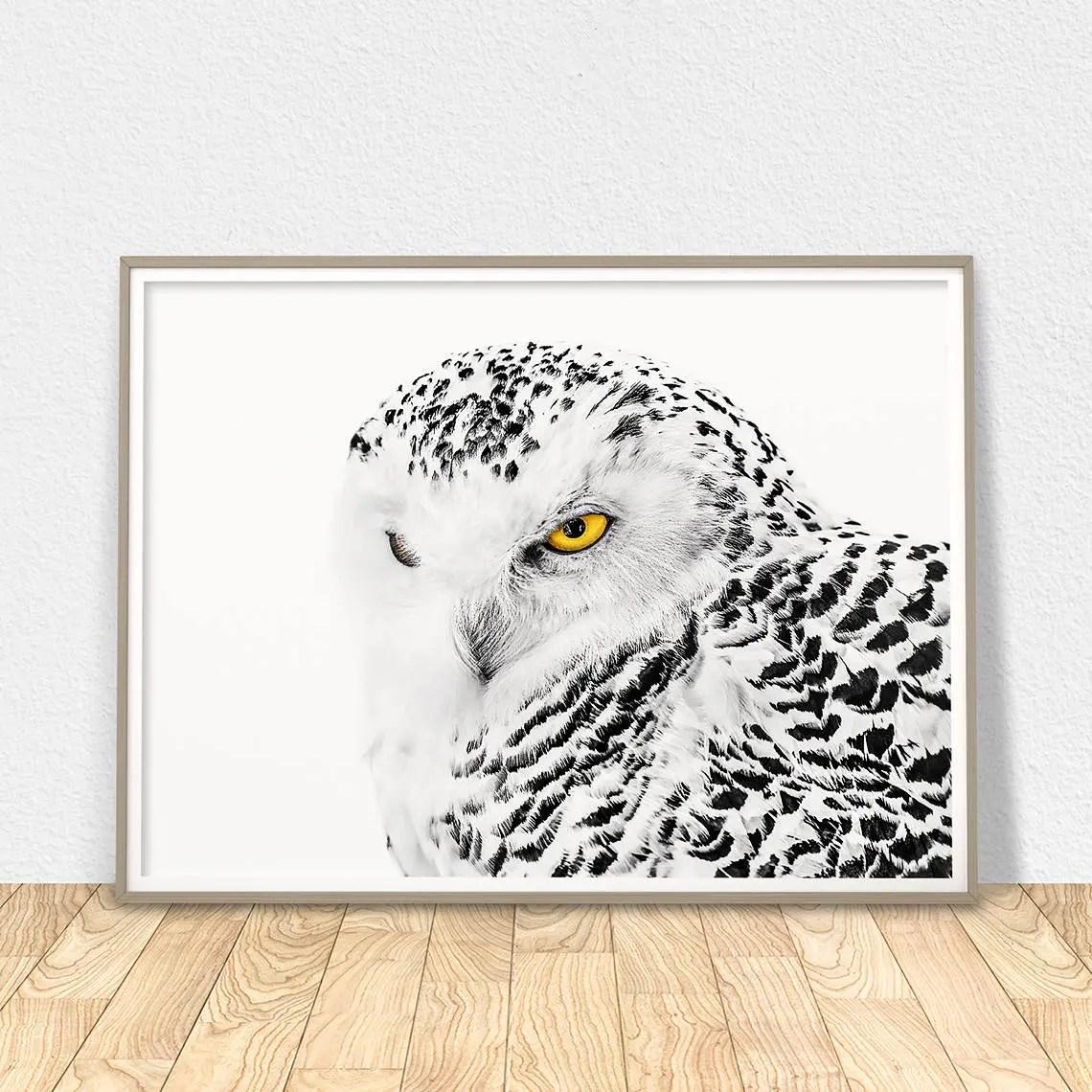 White Owl Poster Printable Wall Art Owl Decor Snowy Owl
