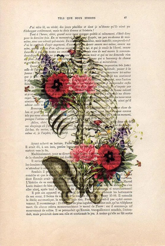 Rib Cage Drawing With Flowers : drawing, flowers, Retro, Ribcage, Flower, Anatomy, Print, Human