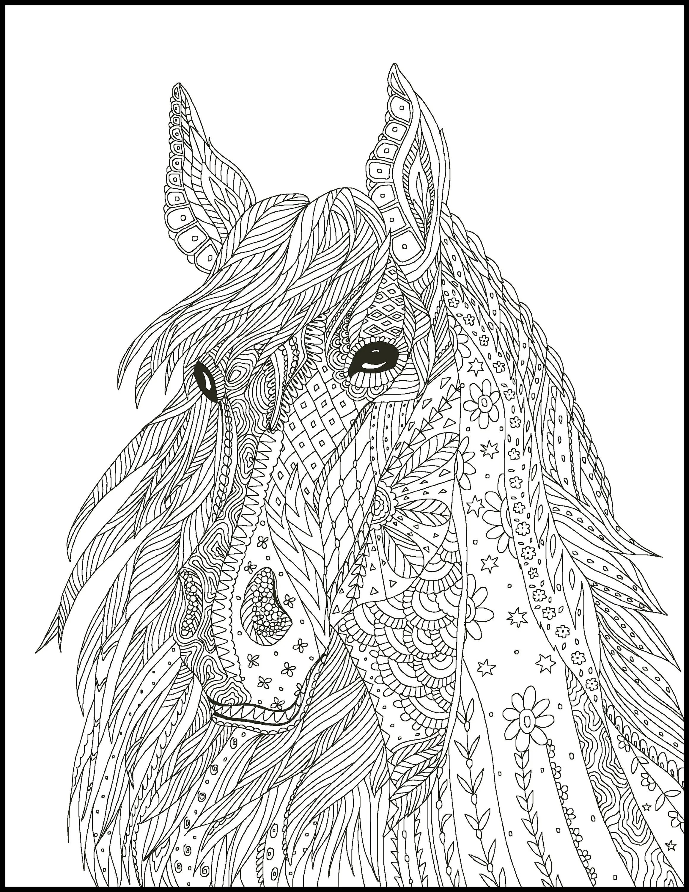 Horse Coloring Page For Adults Horse Adult Coloring Page