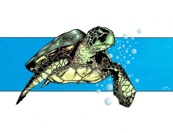 Sea Turtle Drawing Signed Print Etsy