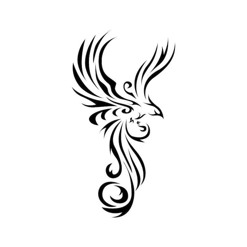 Wings Bird Tribal Animal tatto Graphics SVG EPS Png Cdr Ai