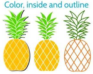Pineapple SVG Pineapple Monogram Frame Round Heart and Split Frames for Cricut & Silhouette SVG Bundle with 12 Clipart SVG cut files