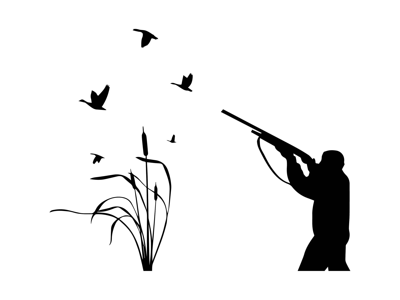 Hunter Rifle Duck Nature Ducks Hunting Shot Hobby Weapon