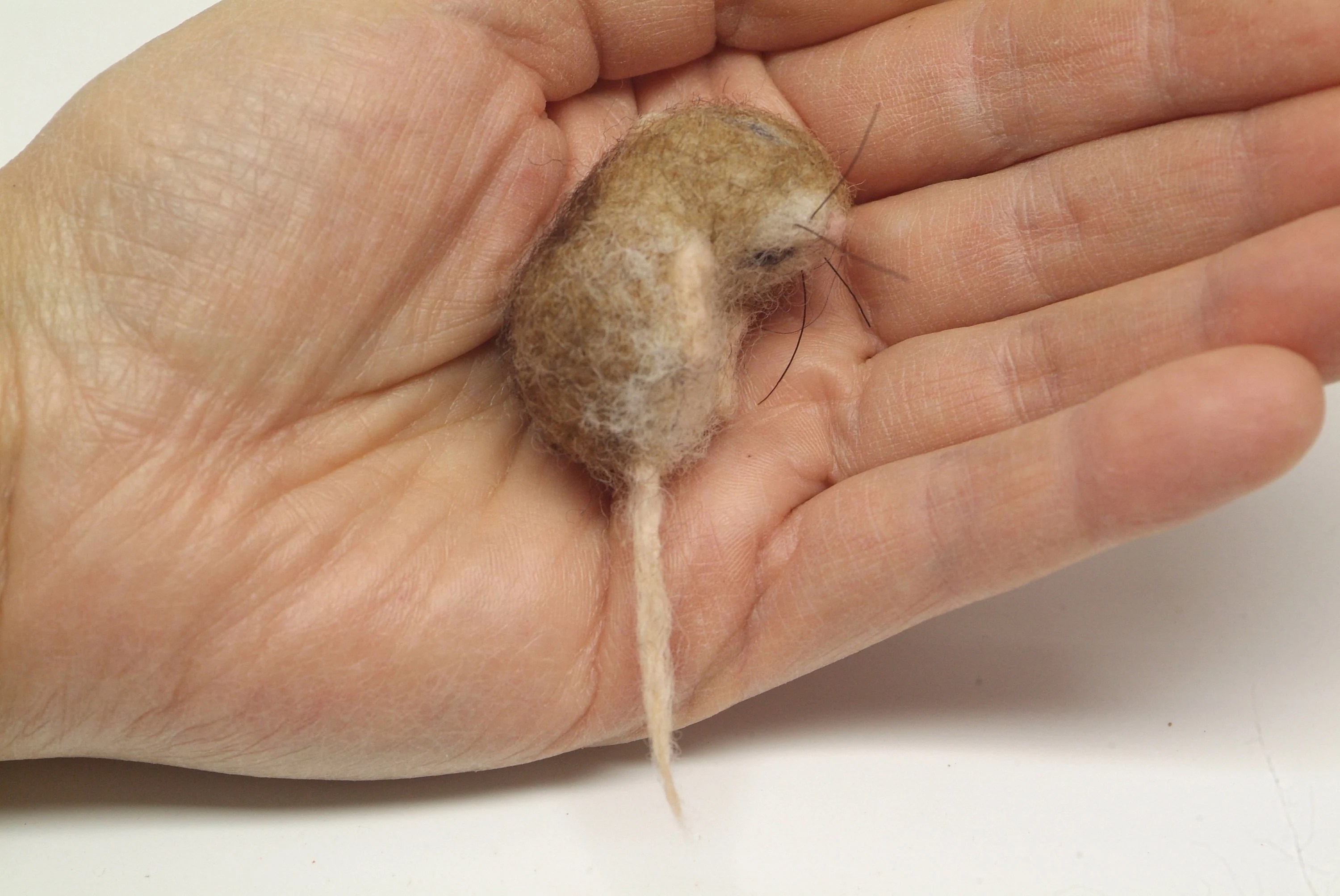 baby mouse etsy