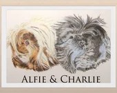 Custom Guinea Pig Portrait Pet Portrait Coloured Pencil Art Guinea Pig Guinea pig lovers