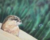 Otter Acrylic Painting