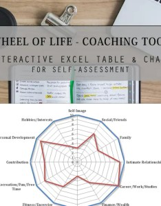 Image also wheel of life coaching tool assessment template etsy rh