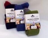 Alpaca Daily Sock