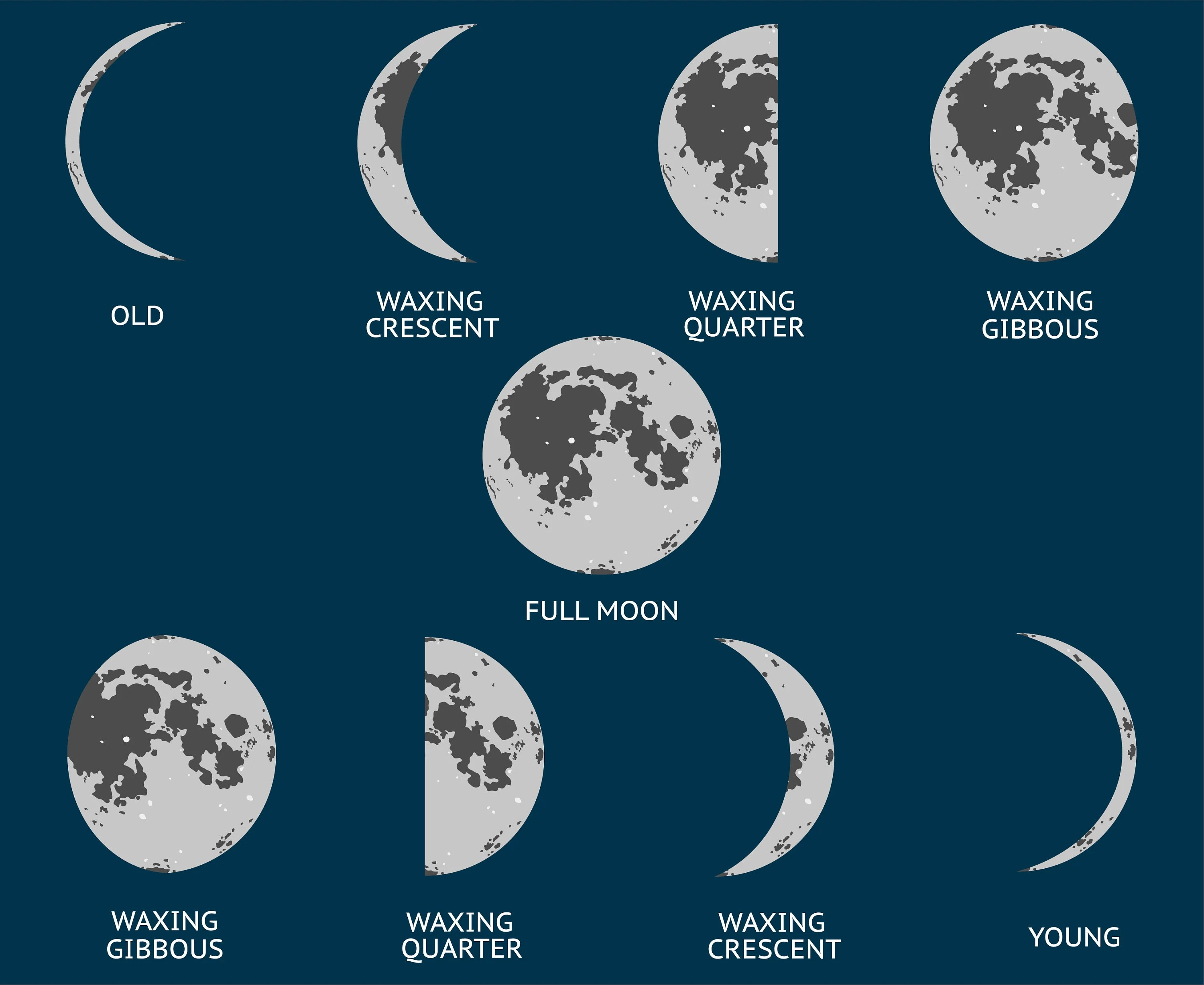 Moon Phases Moon Phase Cycle