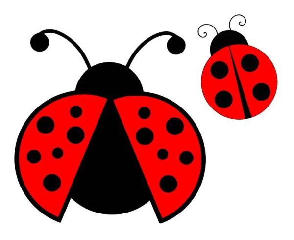 ladybug svg beetle lady bug