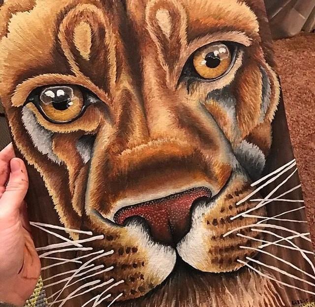fierce lion print