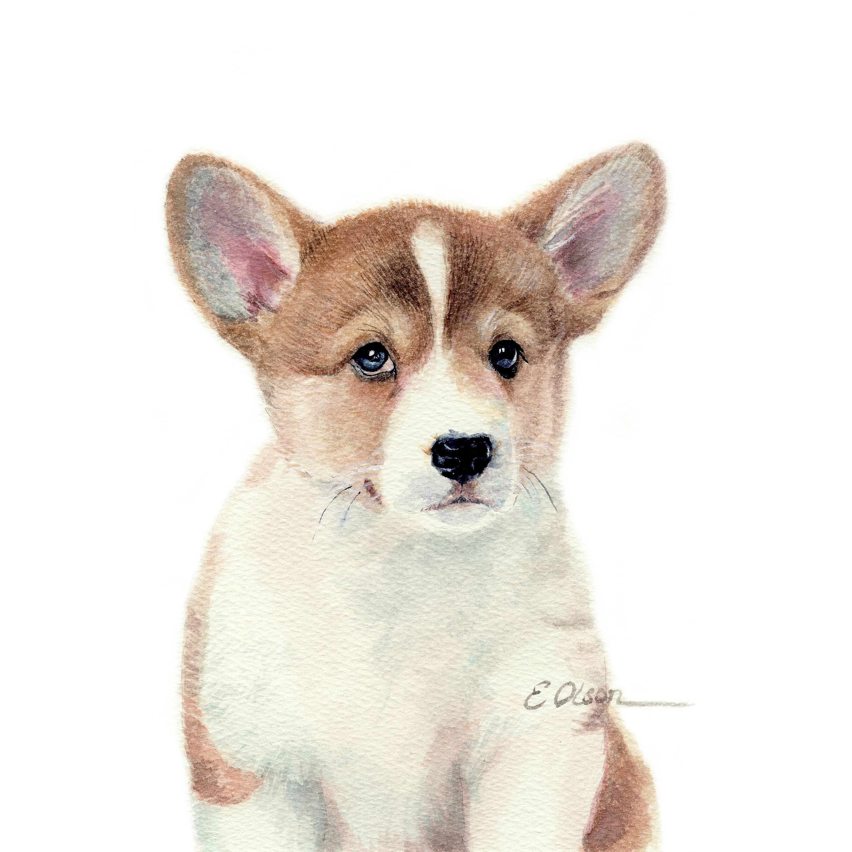 watercolor corgi puppy pembroke